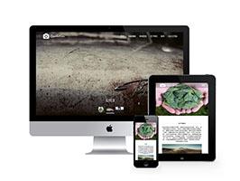 高端响应式作品展示网站