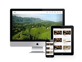 响应式茶叶品茶类网站
