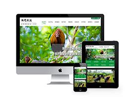 生态农业绿色食品类网站