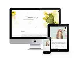 响应式品牌橱窗陈列类网站